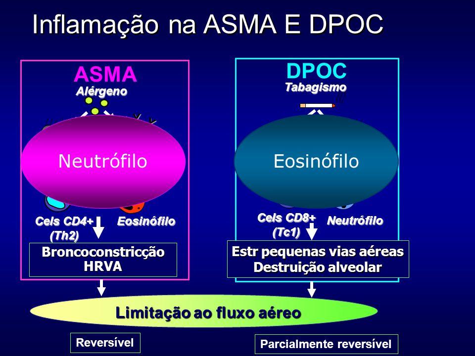 Inflamação na ASMA E DPOC