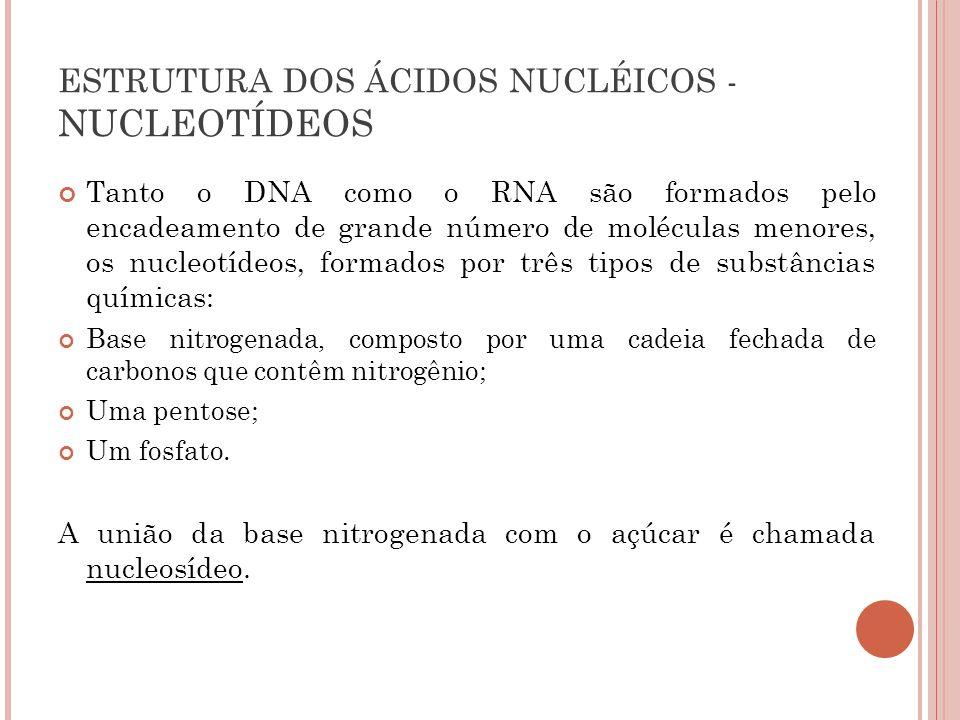 ESTRUTURA DOS ÁCIDOS NUCLÉICOS - NUCLEOTÍDEOS