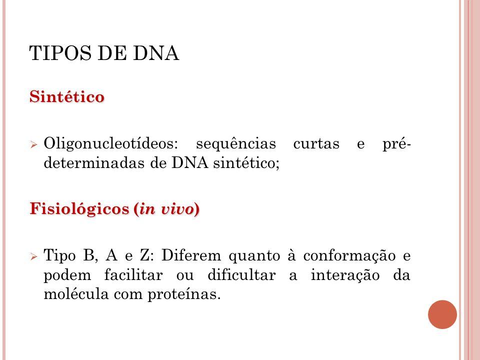 TIPOS DE DNA Sintético. Oligonucleotídeos: sequências curtas e pré- determinadas de DNA sintético;