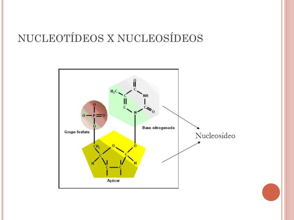 NUCLEOTÍDEOS X NUCLEOSÍDEOS