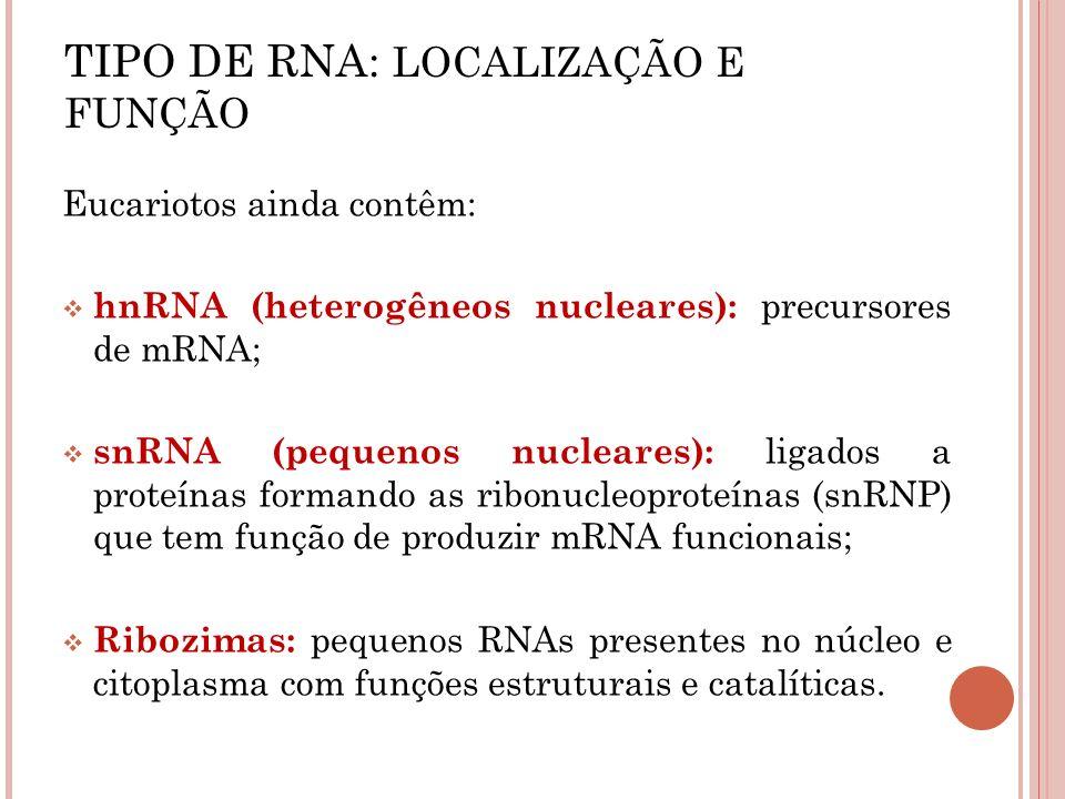 TIPO DE RNA: LOCALIZAÇÃO E FUNÇÃO