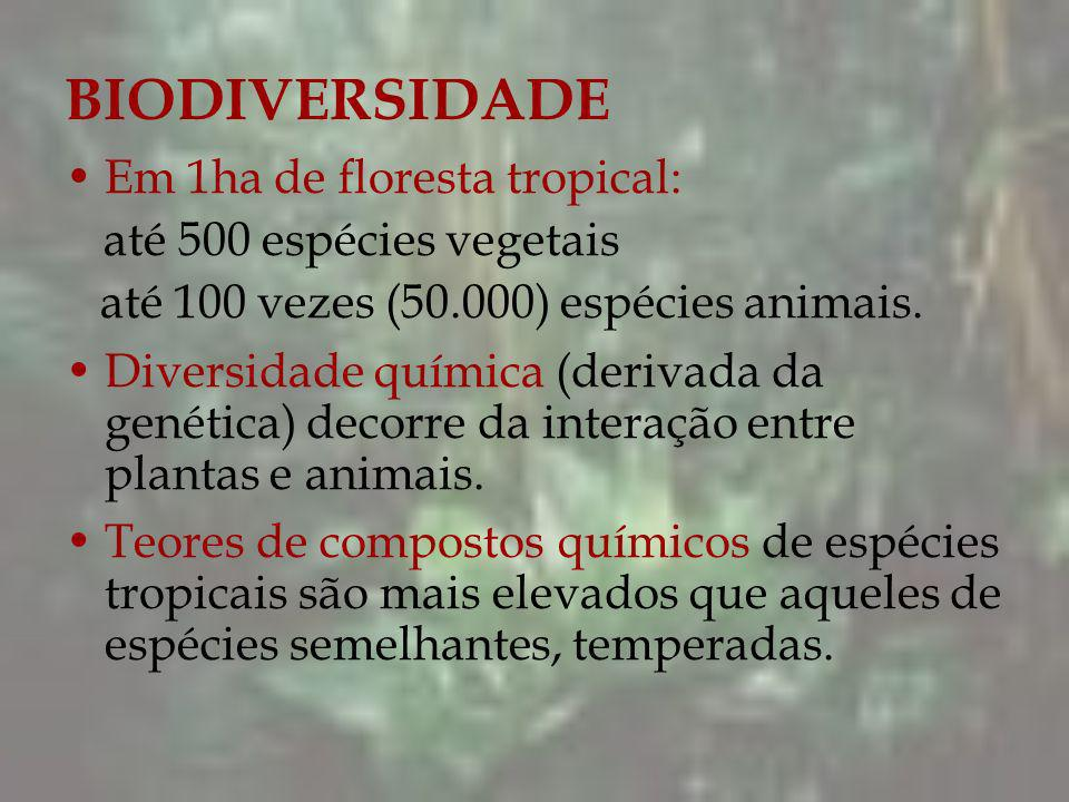 BIODIVERSIDADE Em 1ha de floresta tropical: até 500 espécies vegetais