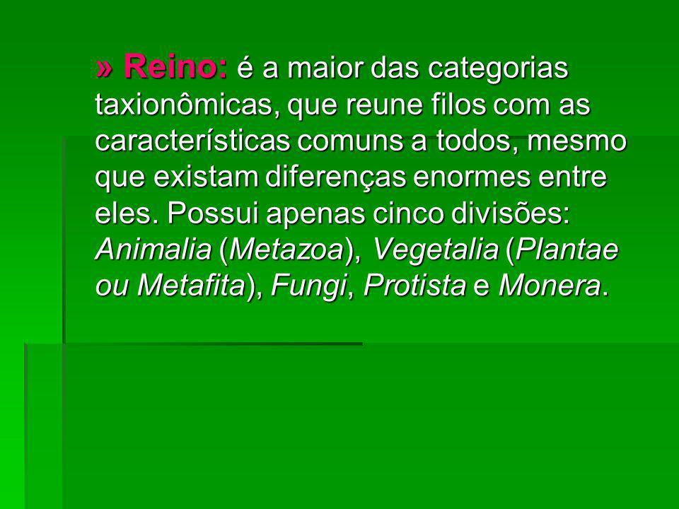 » Reino: é a maior das categorias taxionômicas, que reune filos com as características comuns a todos, mesmo que existam diferenças enormes entre eles.