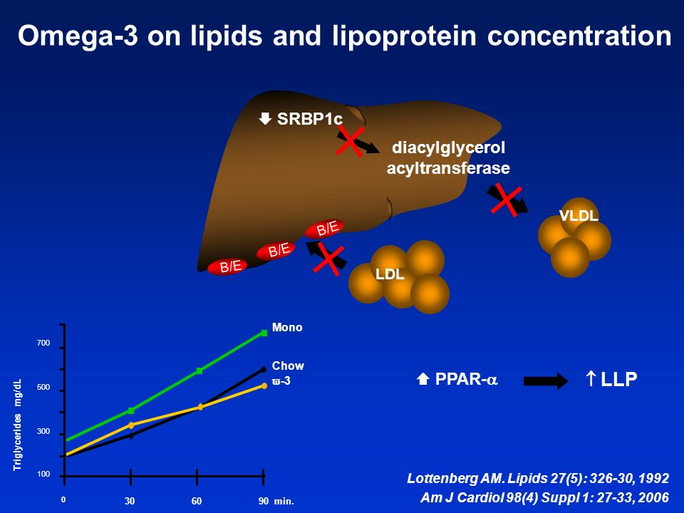 Omega-3 on lipids and lipoprotein concentration