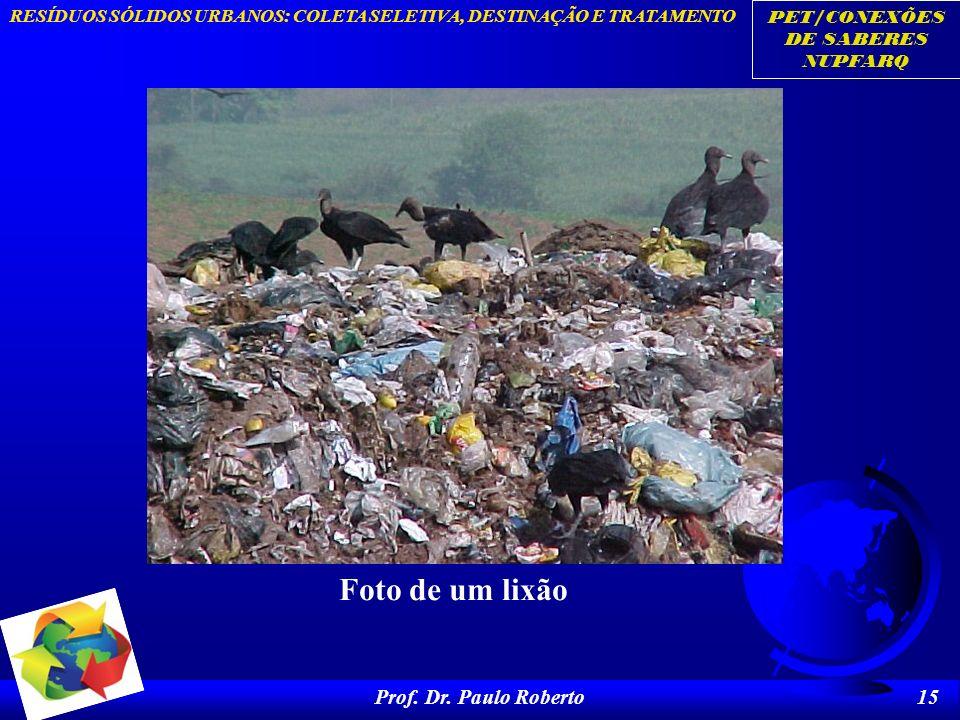 Foto de um lixão Prof. Dr. Paulo Roberto