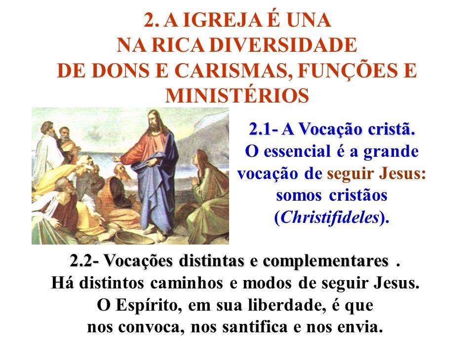 DE DONS E CARISMAS, FUNÇÕES E MINISTÉRIOS