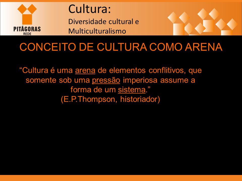 Cultura: Diversidade cultural e Multiculturalismo