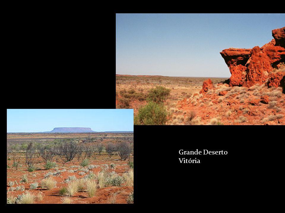 Grande Deserto Vitória
