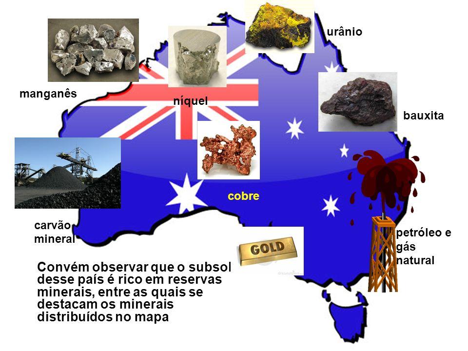 urânio manganês. níquel. bauxita. cobre. carvão mineral. petróleo e gás natural.