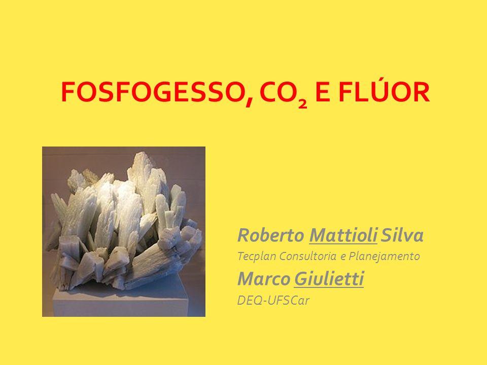 FOSFOGESSO, CO2 E FLÚOR Roberto Mattioli Silva Marco Giulietti