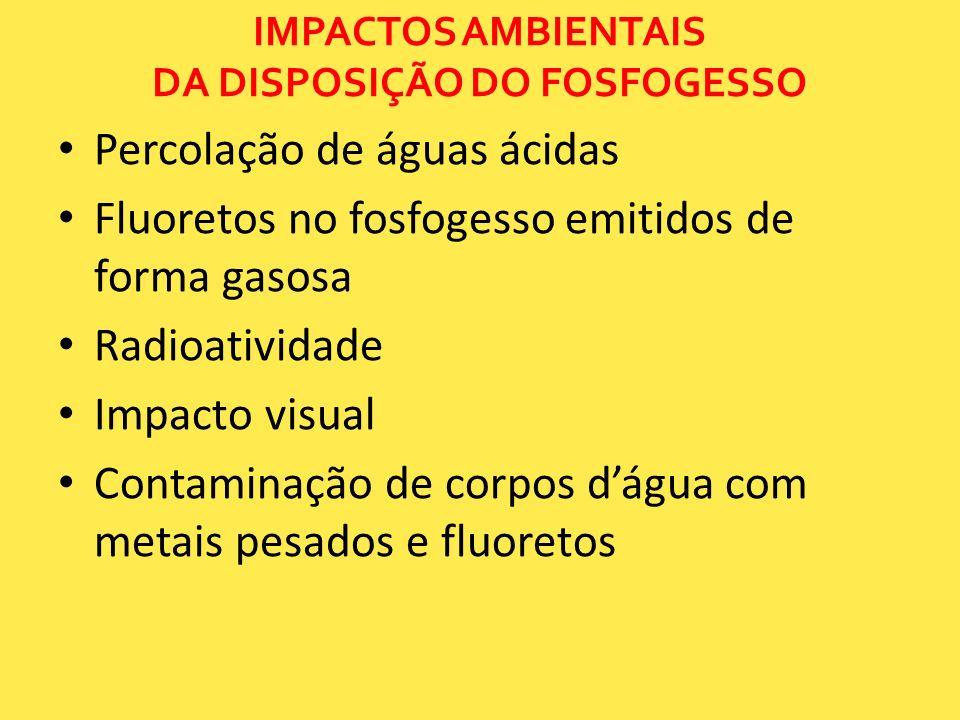 IMPACTOS AMBIENTAIS DA DISPOSIÇÃO DO FOSFOGESSO
