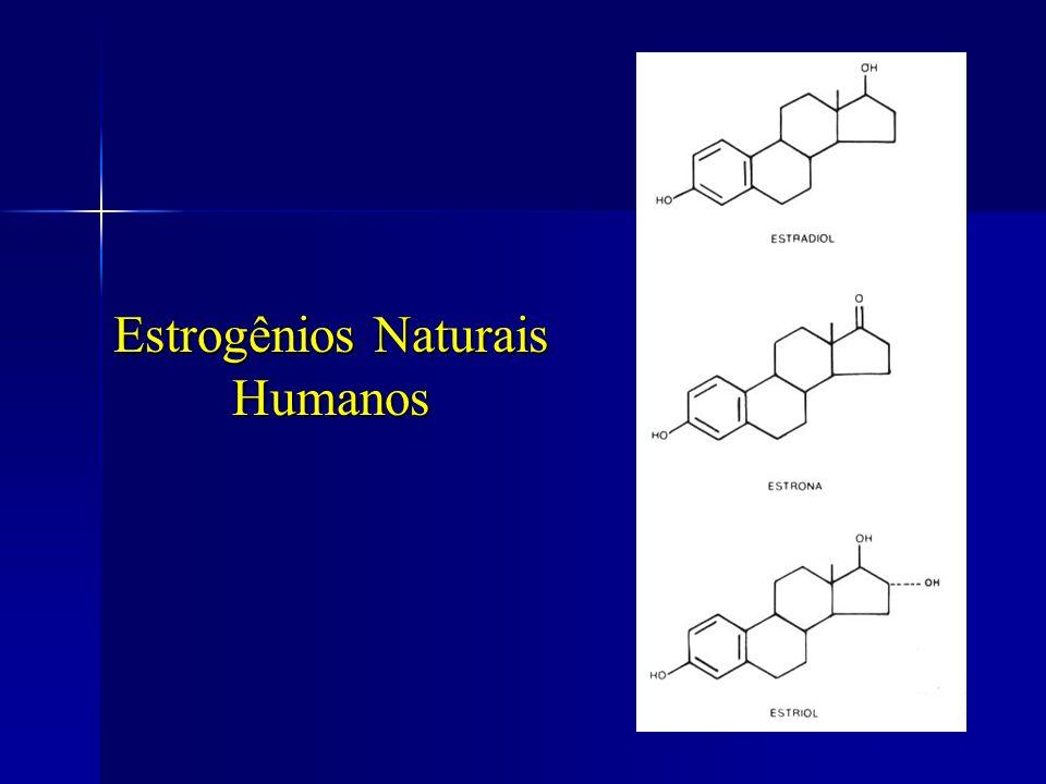 Estrogênios Naturais Humanos