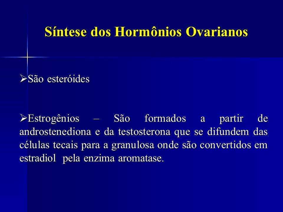 Síntese dos Hormônios Ovarianos