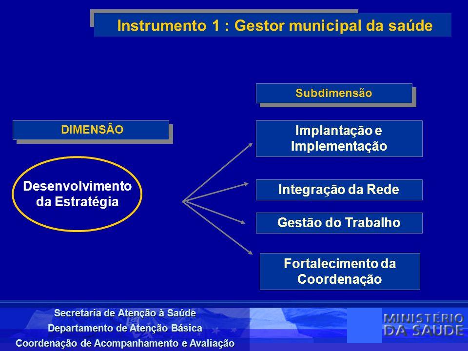 Instrumento 1 : Gestor municipal da saúde
