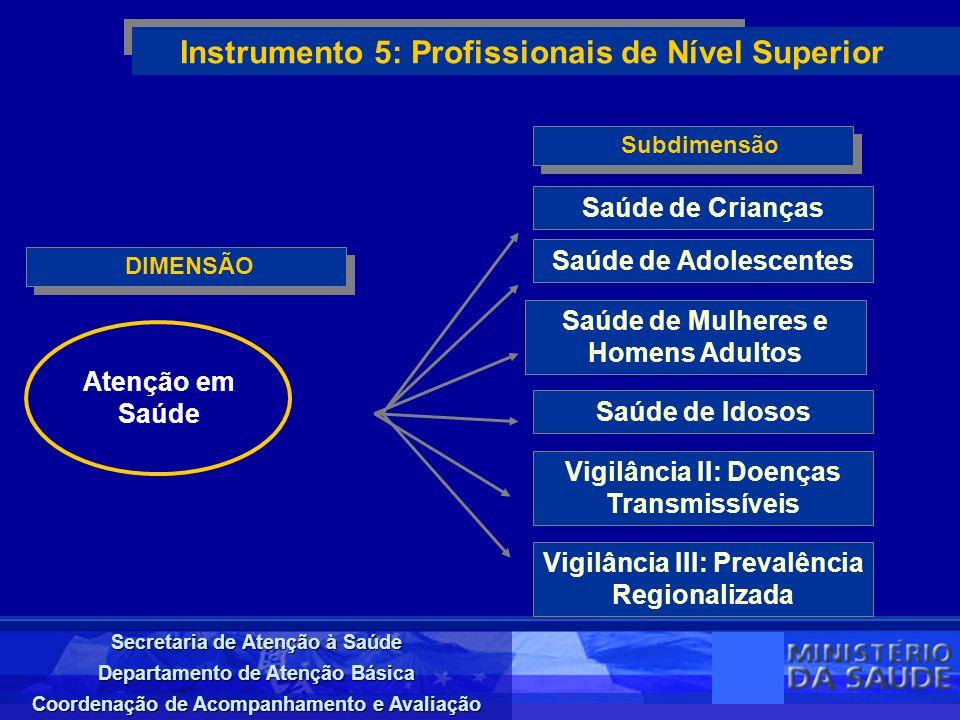 Instrumento 5: Profissionais de Nível Superior