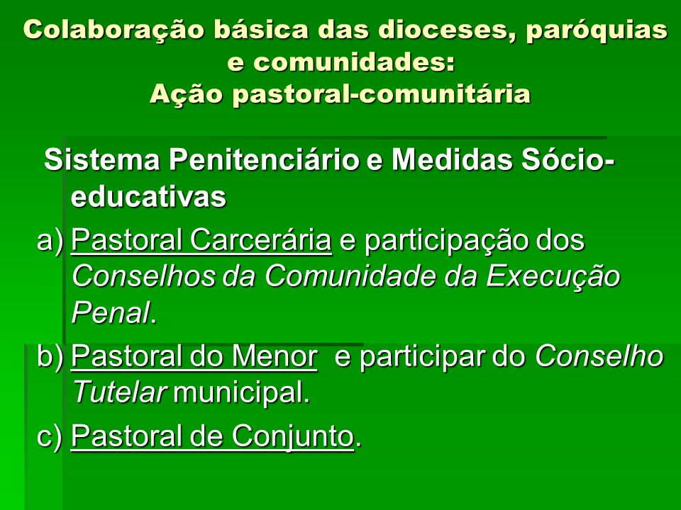 Pastoral do Menor e participar do Conselho Tutelar municipal.