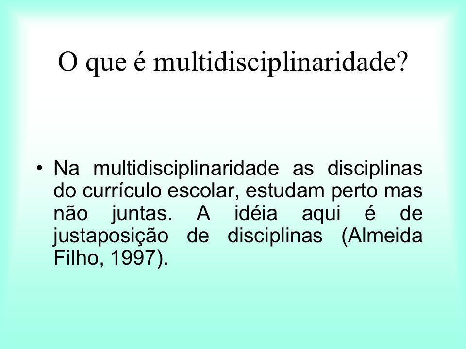 O que é multidisciplinaridade