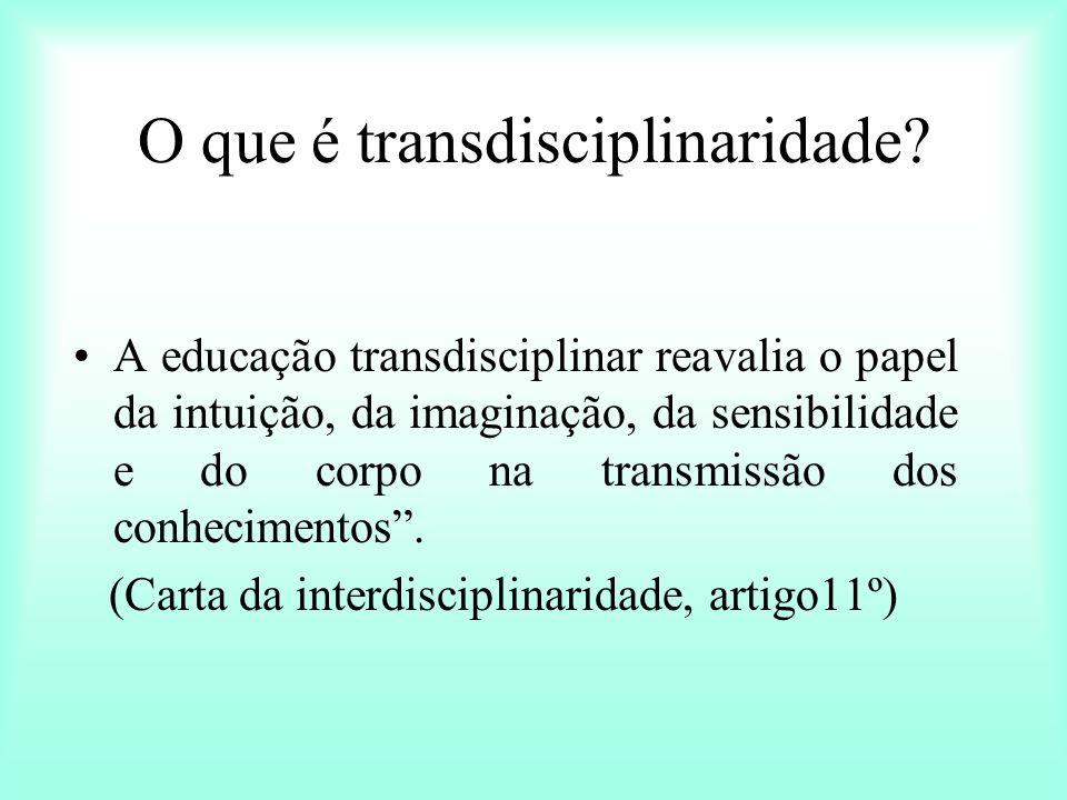 O que é transdisciplinaridade