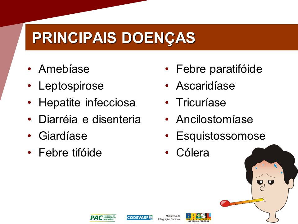 PRINCIPAIS DOENÇAS Amebíase Leptospirose Hepatite infecciosa