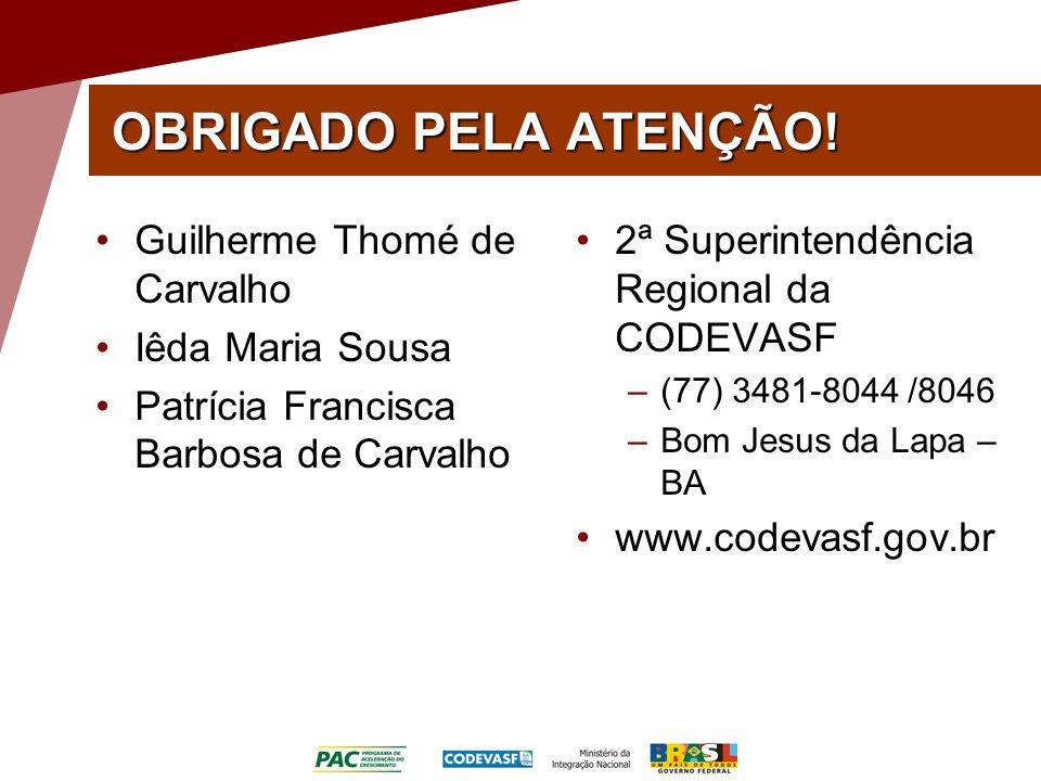 OBRIGADO PELA ATENÇÃO! Guilherme Thomé de Carvalho Iêda Maria Sousa