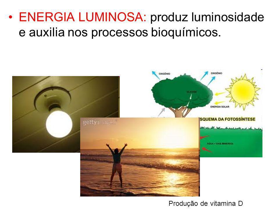 ENERGIA LUMINOSA: produz luminosidade e auxilia nos processos bioquímicos.