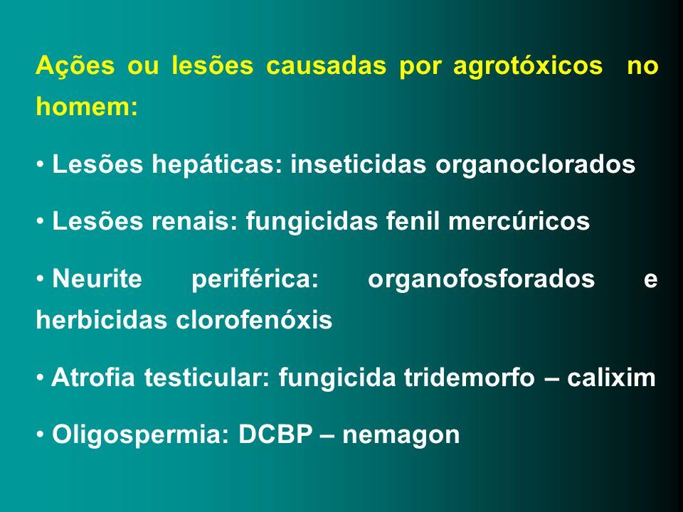 Ações ou lesões causadas por agrotóxicos no homem: