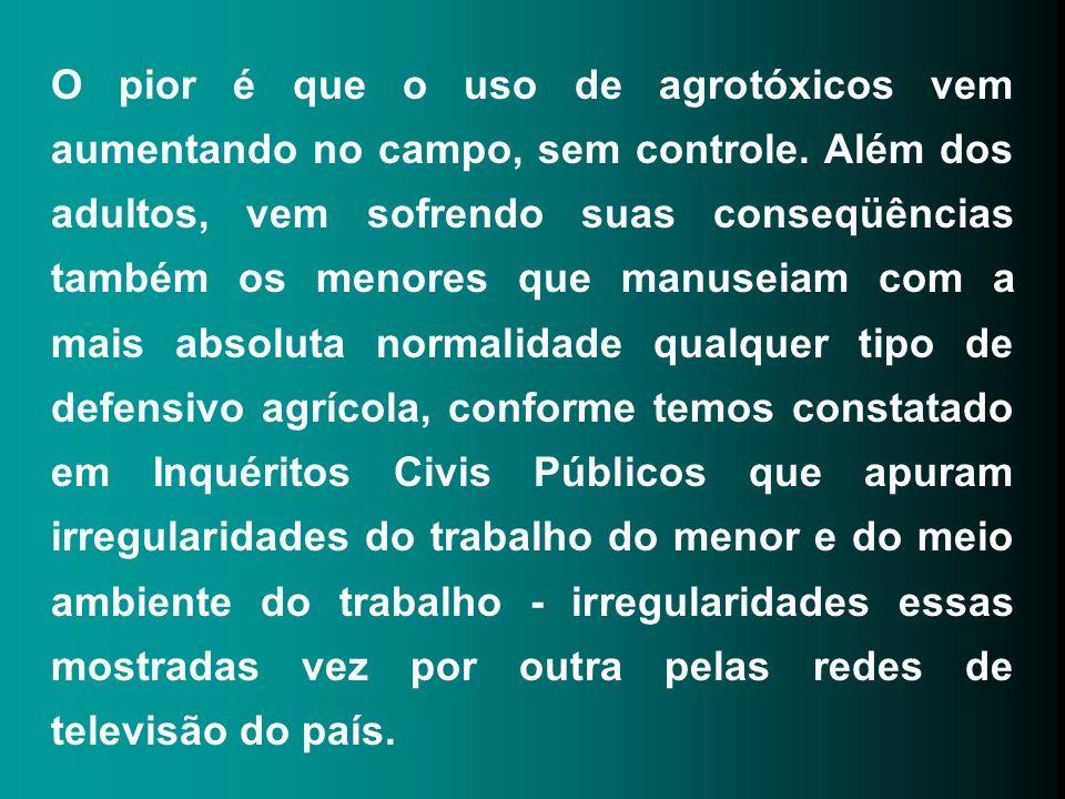 O pior é que o uso de agrotóxicos vem aumentando no campo, sem controle.