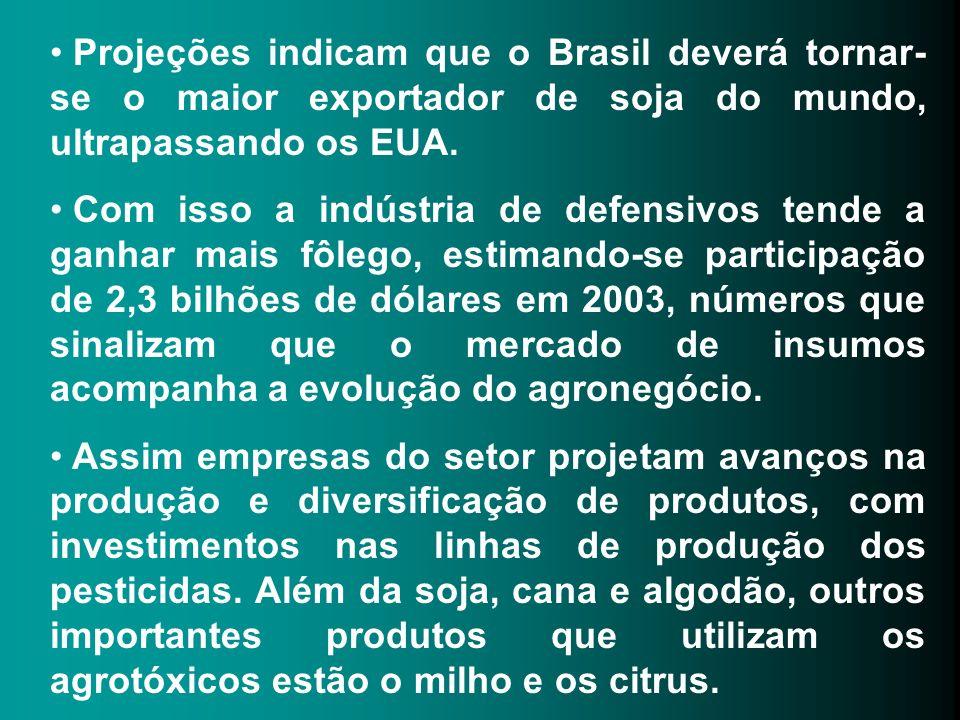 Projeções indicam que o Brasil deverá tornar-se o maior exportador de soja do mundo, ultrapassando os EUA.