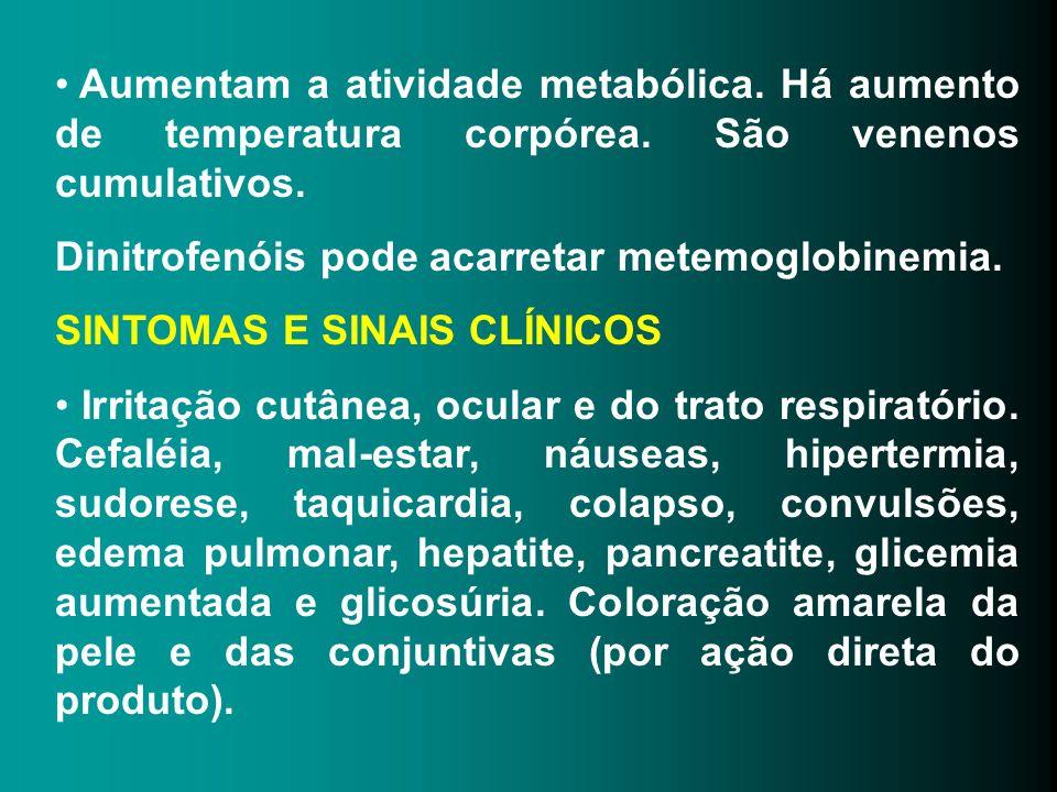 Aumentam a atividade metabólica. Há aumento de temperatura corpórea
