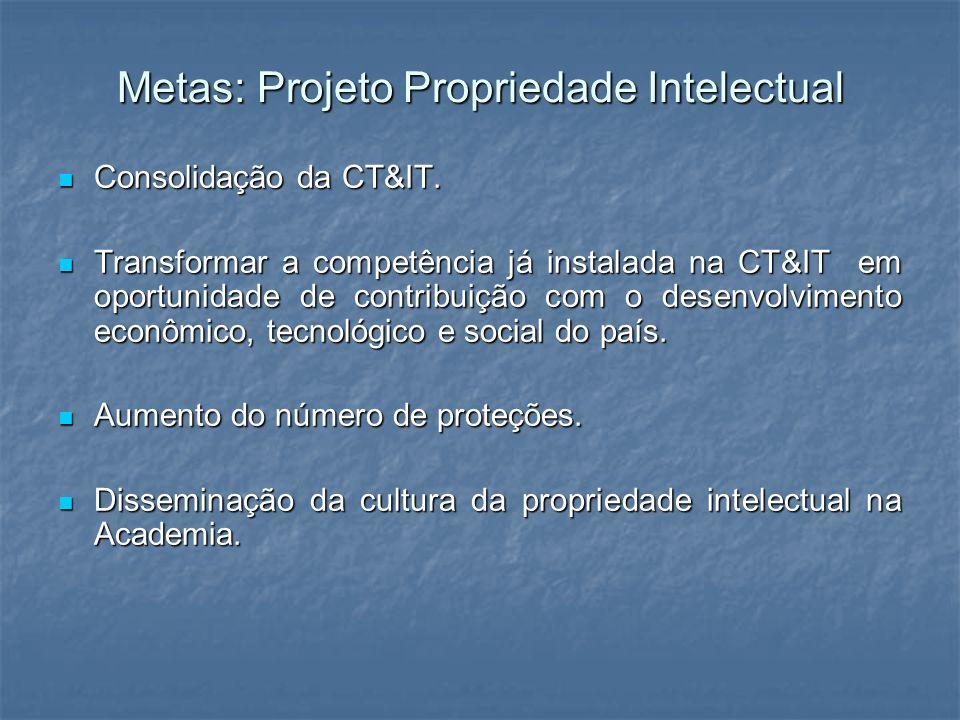 Metas: Projeto Propriedade Intelectual