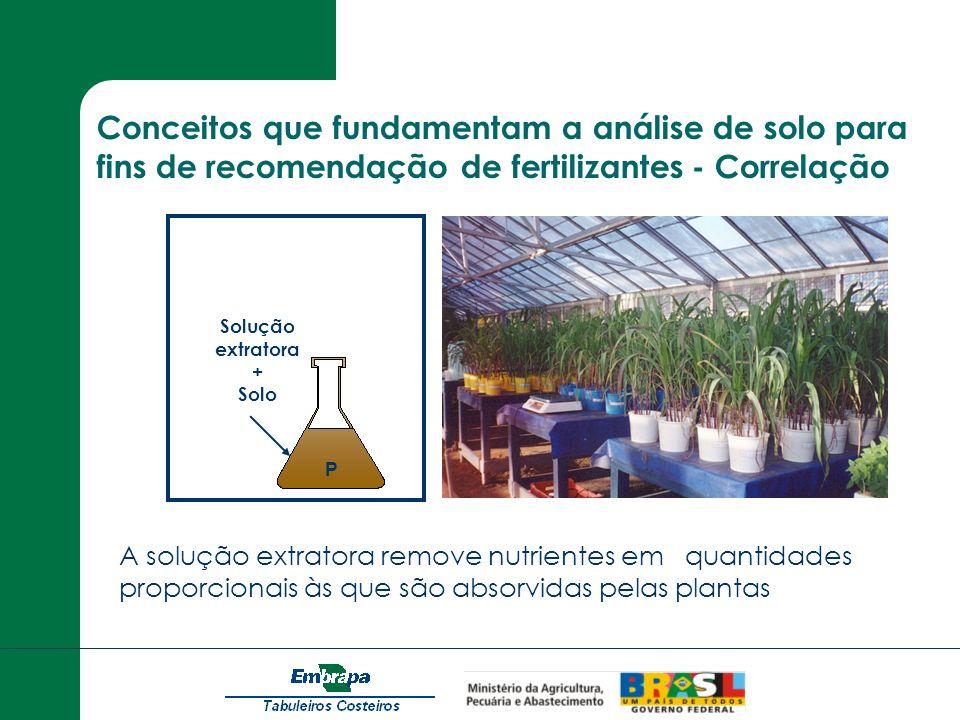 Conceitos que fundamentam a análise de solo para fins de recomendação de fertilizantes - Correlação