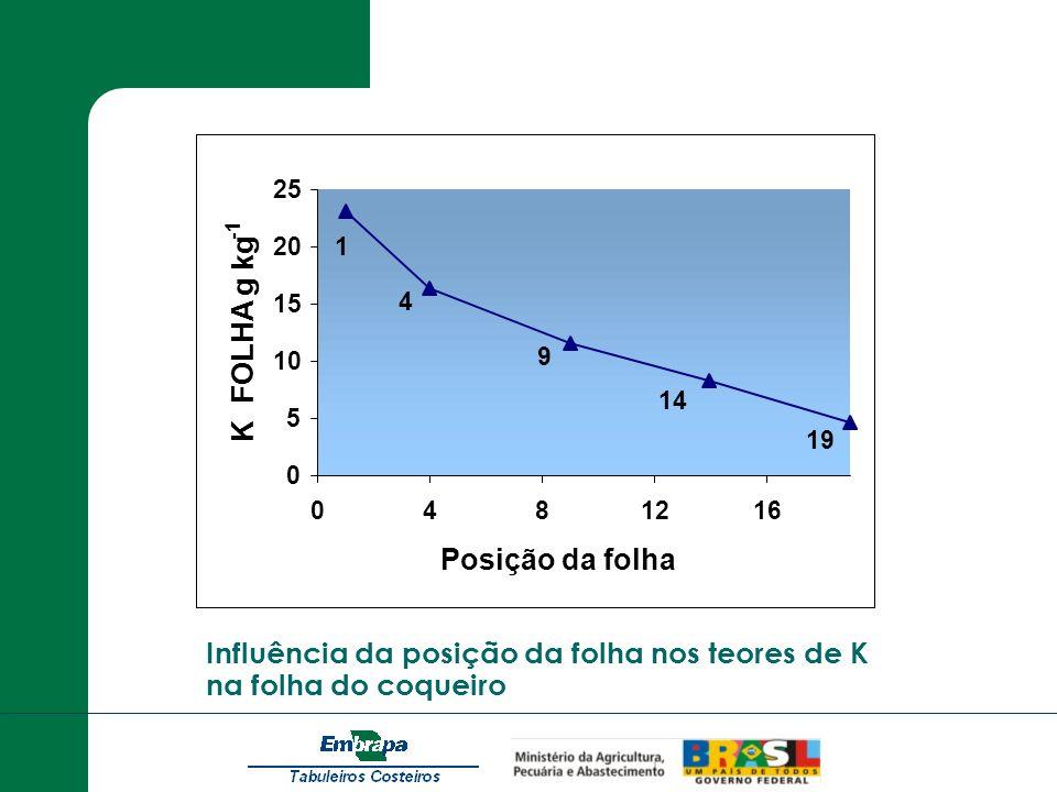 Influência da posição da folha nos teores de K na folha do coqueiro