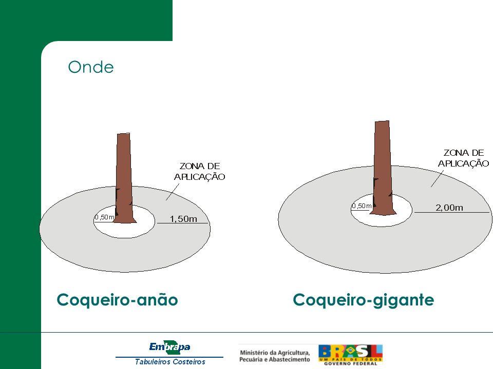 Onde Coqueiro-anão Coqueiro-gigante
