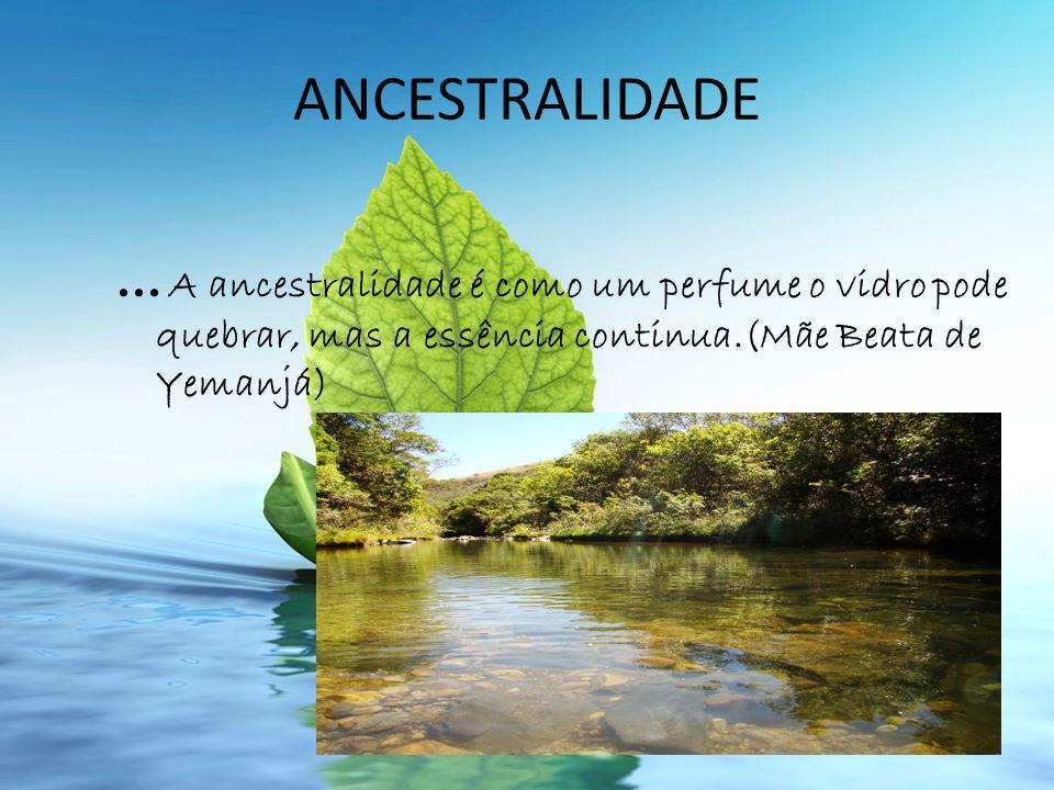ANCESTRALIDADE ...