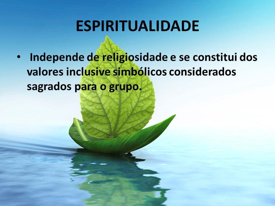 ESPIRITUALIDADE Independe de religiosidade e se constitui dos valores inclusive simbólicos considerados sagrados para o grupo.