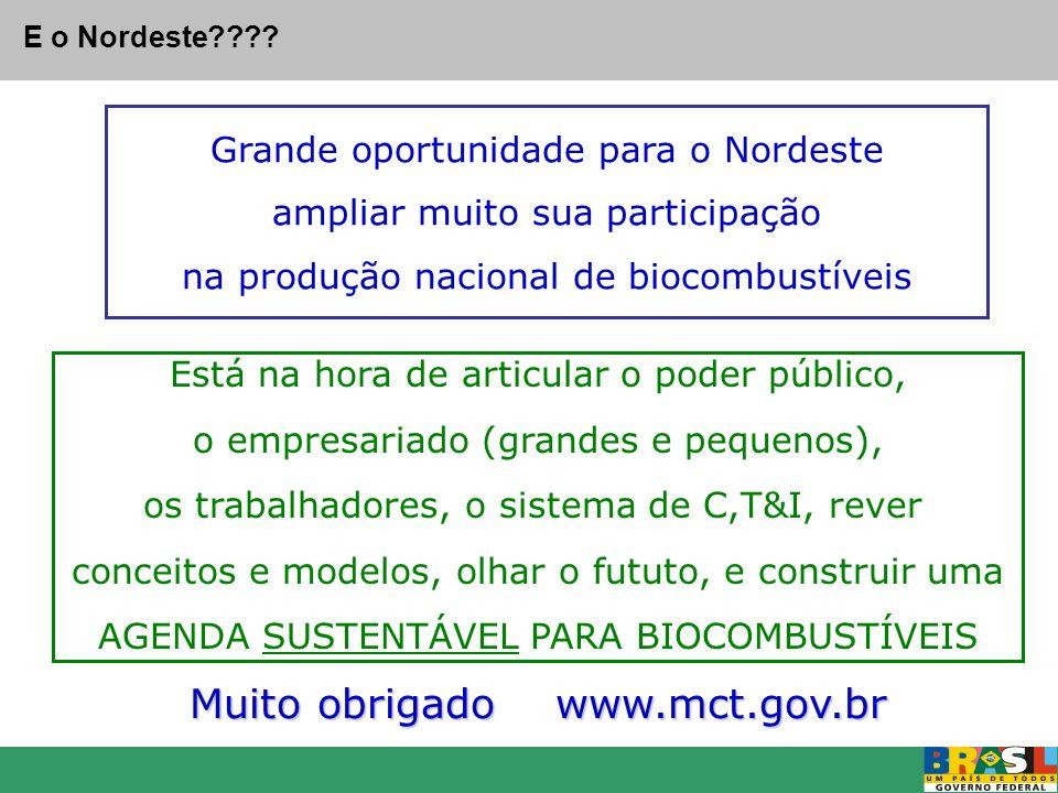 Muito obrigado www.mct.gov.br