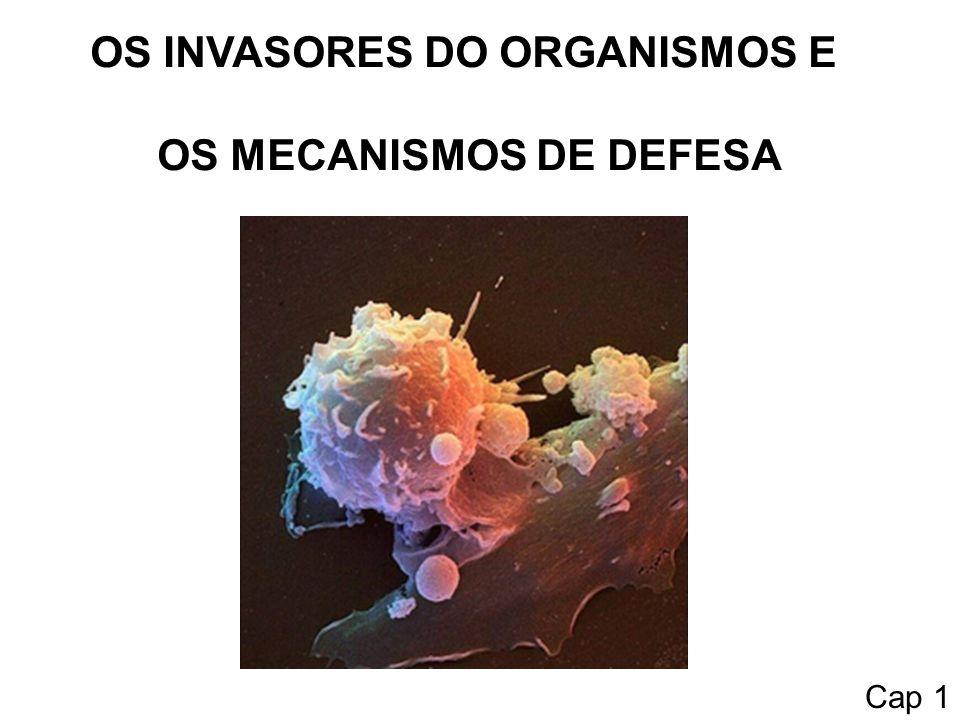 OS INVASORES DO ORGANISMOS E OS MECANISMOS DE DEFESA