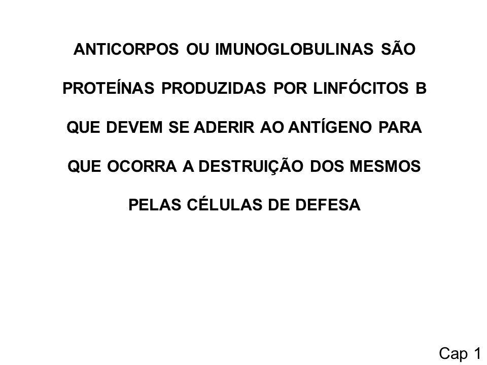 ANTICORPOS OU IMUNOGLOBULINAS SÃO