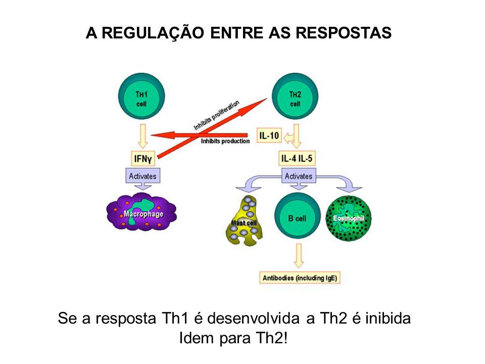 Se a resposta Th1 é desenvolvida a Th2 é inibida