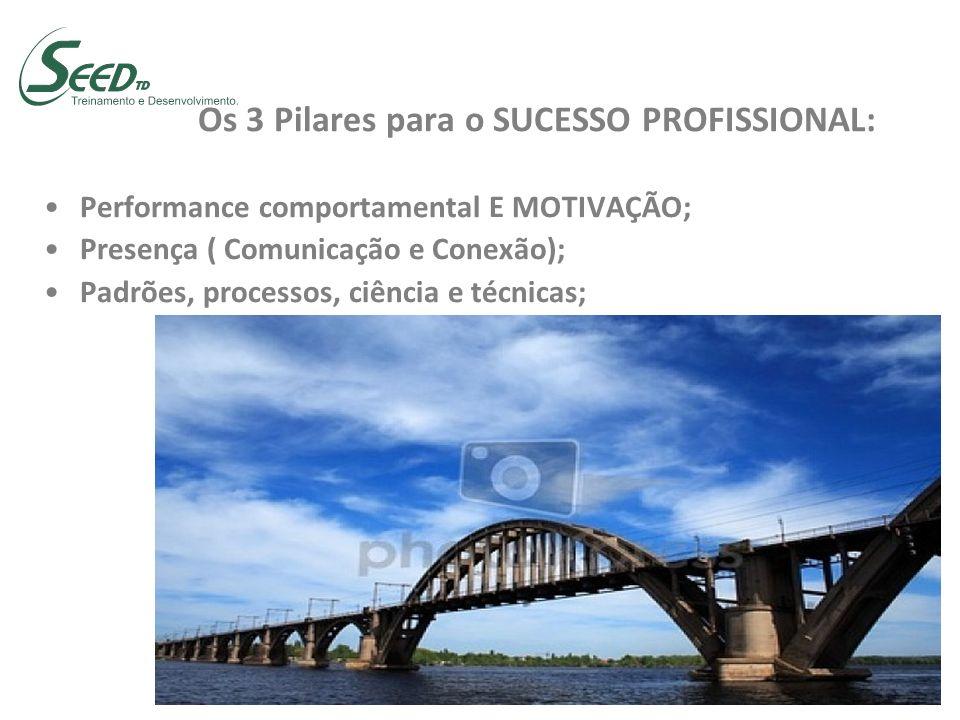 Os 3 Pilares para o SUCESSO PROFISSIONAL: