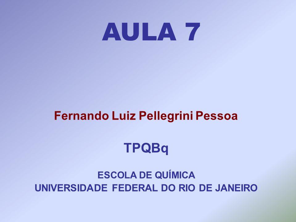 Fernando Luiz Pellegrini Pessoa UNIVERSIDADE FEDERAL DO RIO DE JANEIRO