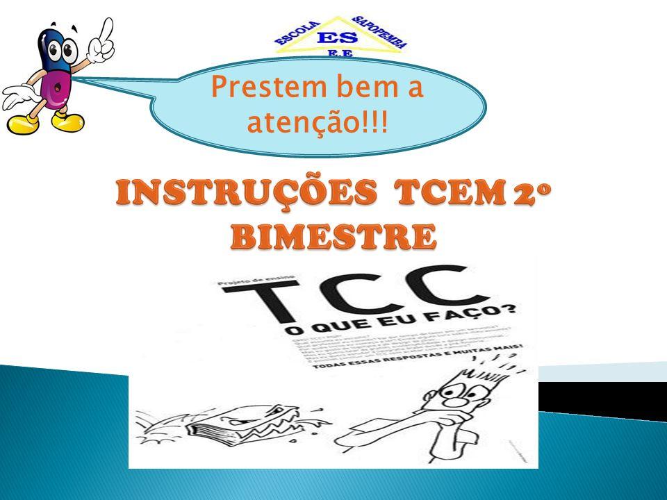 INSTRUÇÕES TCEM 2º BIMESTRE