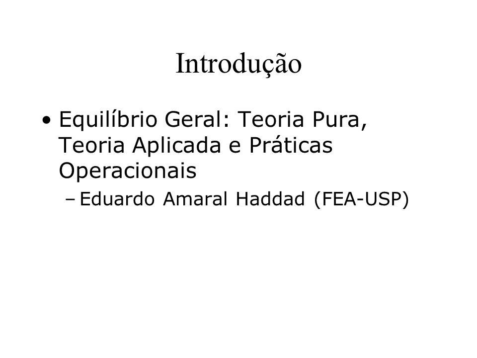 Introdução Equilíbrio Geral: Teoria Pura, Teoria Aplicada e Práticas Operacionais.
