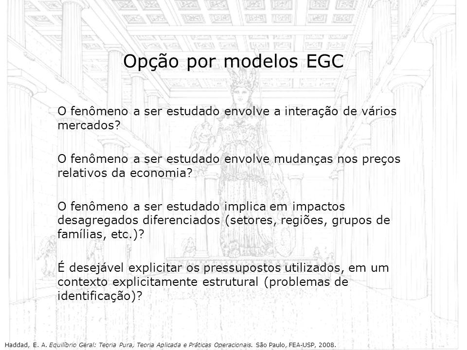 Opção por modelos EGC O fenômeno a ser estudado envolve a interação de vários mercados