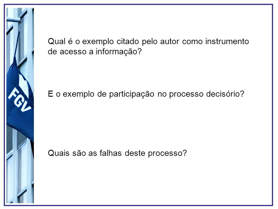 Qual é o exemplo citado pelo autor como instrumento de acesso a informação