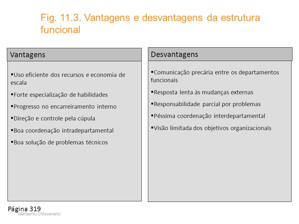 Fig. 11.3. Vantagens e desvantagens da estrutura funcional