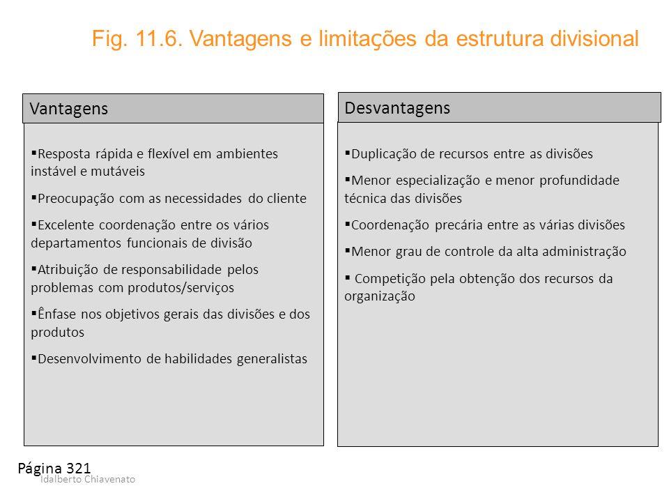 Fig. 11.6. Vantagens e limitações da estrutura divisional