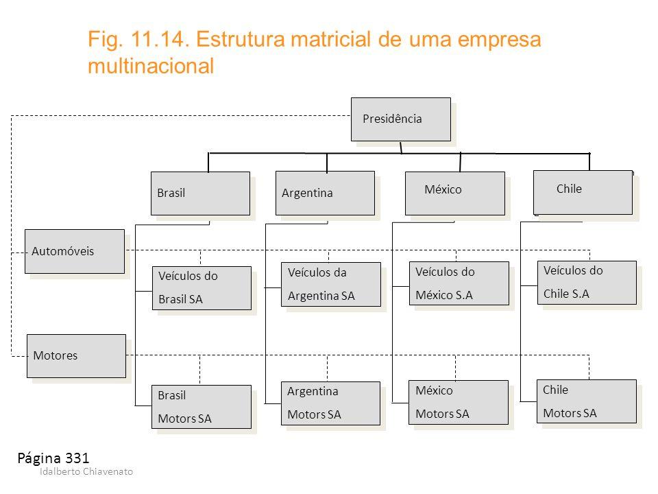 Fig. 11.14. Estrutura matricial de uma empresa multinacional