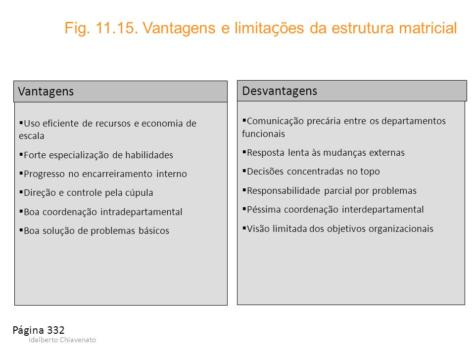 Fig. 11.15. Vantagens e limitações da estrutura matricial