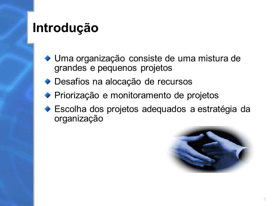 Introdução Uma organização consiste de uma mistura de grandes e pequenos projetos. Desafios na alocação de recursos.